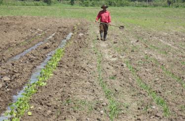 El objetivo es apoyar a los sectores agroalimentario y turismo.